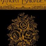 angrycouv-723x1024